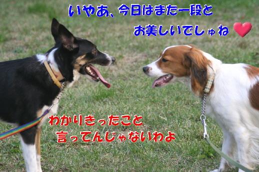 d0013149_2310491.jpg