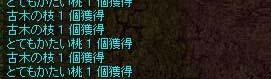 b0105167_1393380.jpg