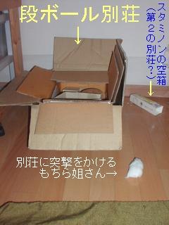 b0016983_111421.jpg