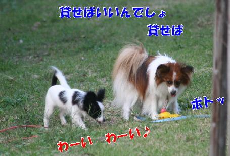 d0013149_011643.jpg