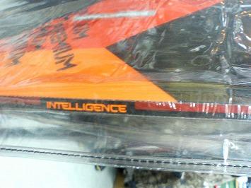 HEAD intellegence167/259 エリック・テメル モデル_e0037849_8553511.jpg