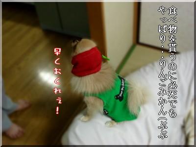 b0078073_22375.jpg