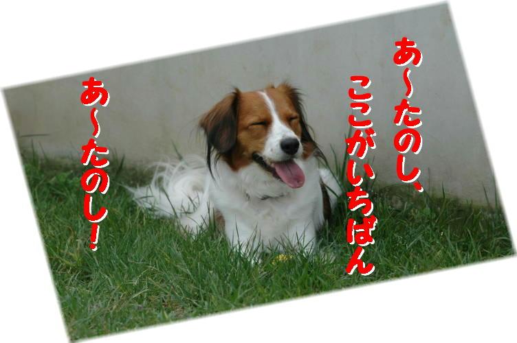 c0075585_824590.jpg