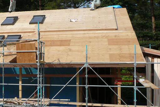 Q1前沢の家10 : 軸・屋根検査2_e0054299_18465699.jpg