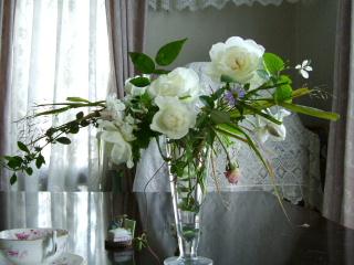 赤い実と白いバラ_f0007106_21551291.jpg