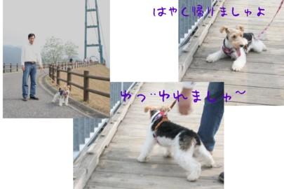 宮ヶ瀬湖_c0070377_21365699.jpg