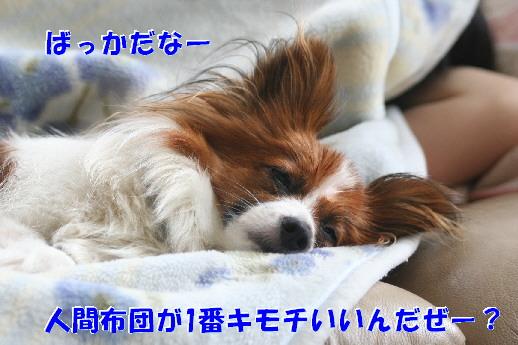 d0013149_1192749.jpg