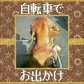 b0108053_5333113.jpg