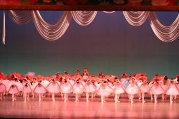 須貝りさクラシックバレエ 第6回オータムバレエコンサート _d0082356_8585329.jpg