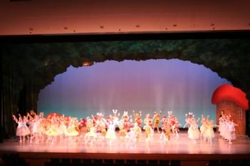 須貝りさクラシックバレエ 第6回オータムバレエコンサート _d0082356_8591693.jpg