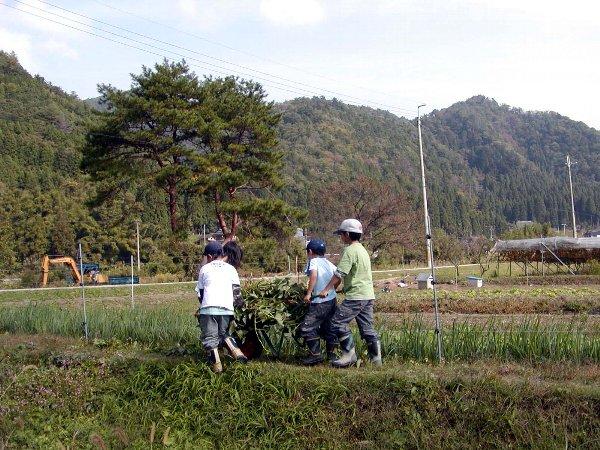 芋掘り_c0057390_6595662.jpg