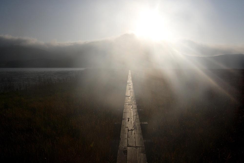 stairway to heaven_c0065410_12422898.jpg