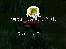 f0048418_1904654.jpg