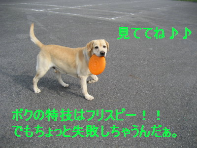 c0092787_12475934.jpg