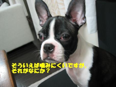 c0092097_23302455.jpg