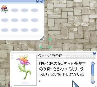 b0098610_322185.jpg