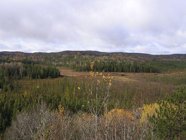 カナダ便り   アルゴンキン州立公園_a0027125_6323282.jpg