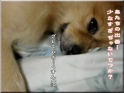 b0078073_15322459.jpg