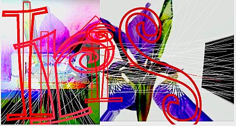 d0093181_1525458.jpg