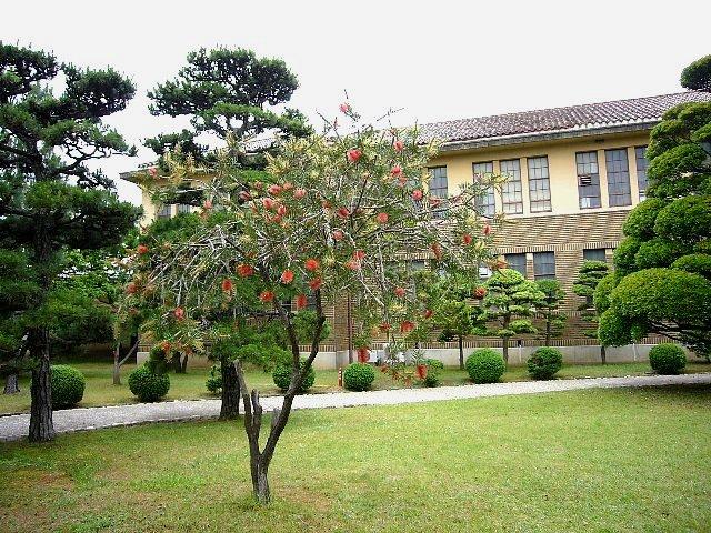 神戸女学院 理学館_c0094541_13461164.jpg