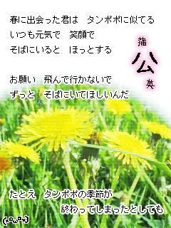 e0099047_1710245.jpg
