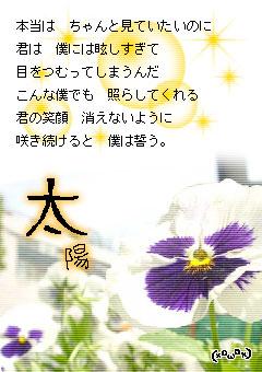 e0099047_17872.jpg