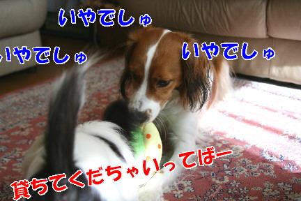 d0013149_21264362.jpg