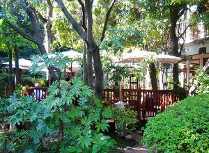 同じく、植木や木立の向こうにテラスが見えて、白いパラソルの下には、それぞれテーブルが配置されています。テラスの木の柵の茶色が緑に映えています。