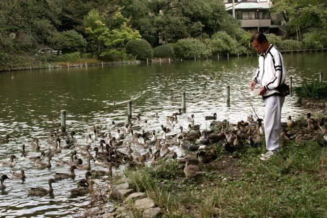 善福寺公園_f0044056_16361894.jpg