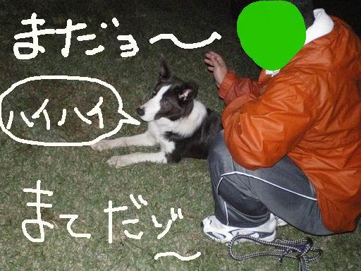 d0086564_2014314.jpg