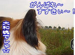 f0011845_29310.jpg
