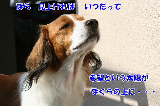 d0013149_22301165.jpg