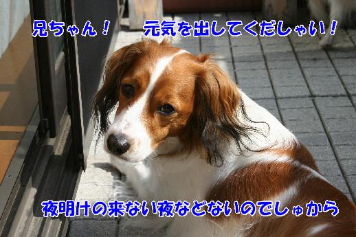 d0013149_2230181.jpg