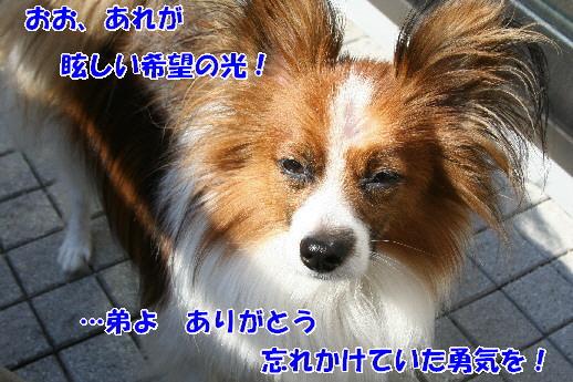 d0013149_22431581.jpg