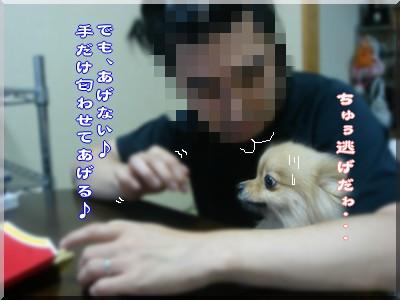 b0078073_01910.jpg