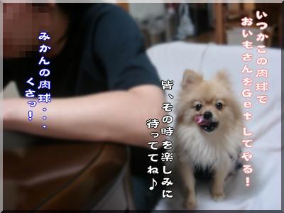 b0078073_0567.jpg