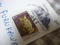 インドからの手紙_f0038600_22135633.jpg