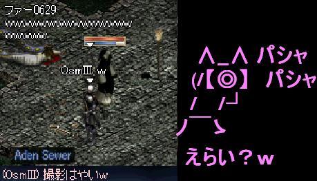 f0072010_2391570.jpg