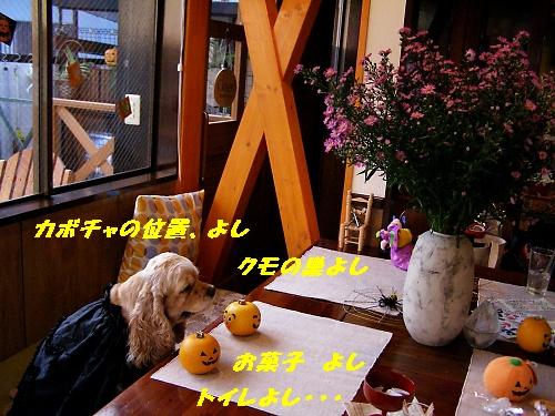 b0067012_20102796.jpg