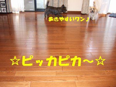c0039114_23333121.jpg