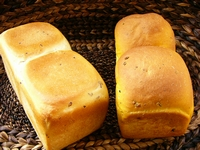 かぼちゃパンとさつまいもパン_a0043319_15473329.jpg
