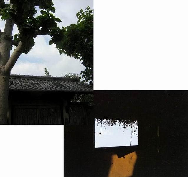 f0045090_14341346.jpg