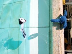イヌくん泳ぐ_b0071706_10493986.jpg