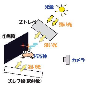 f0060312_065240.jpg