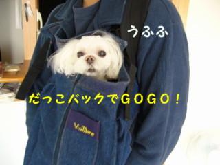 f0005727_20481126.jpg