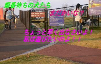 d0013645_140514.jpg