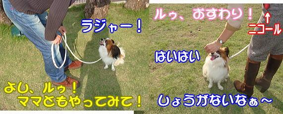 f0011845_095872.jpg