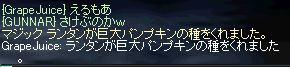 b0074571_926486.jpg