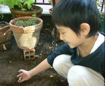 オークリーフ(秋のmy garden)_f0049672_12512043.jpg