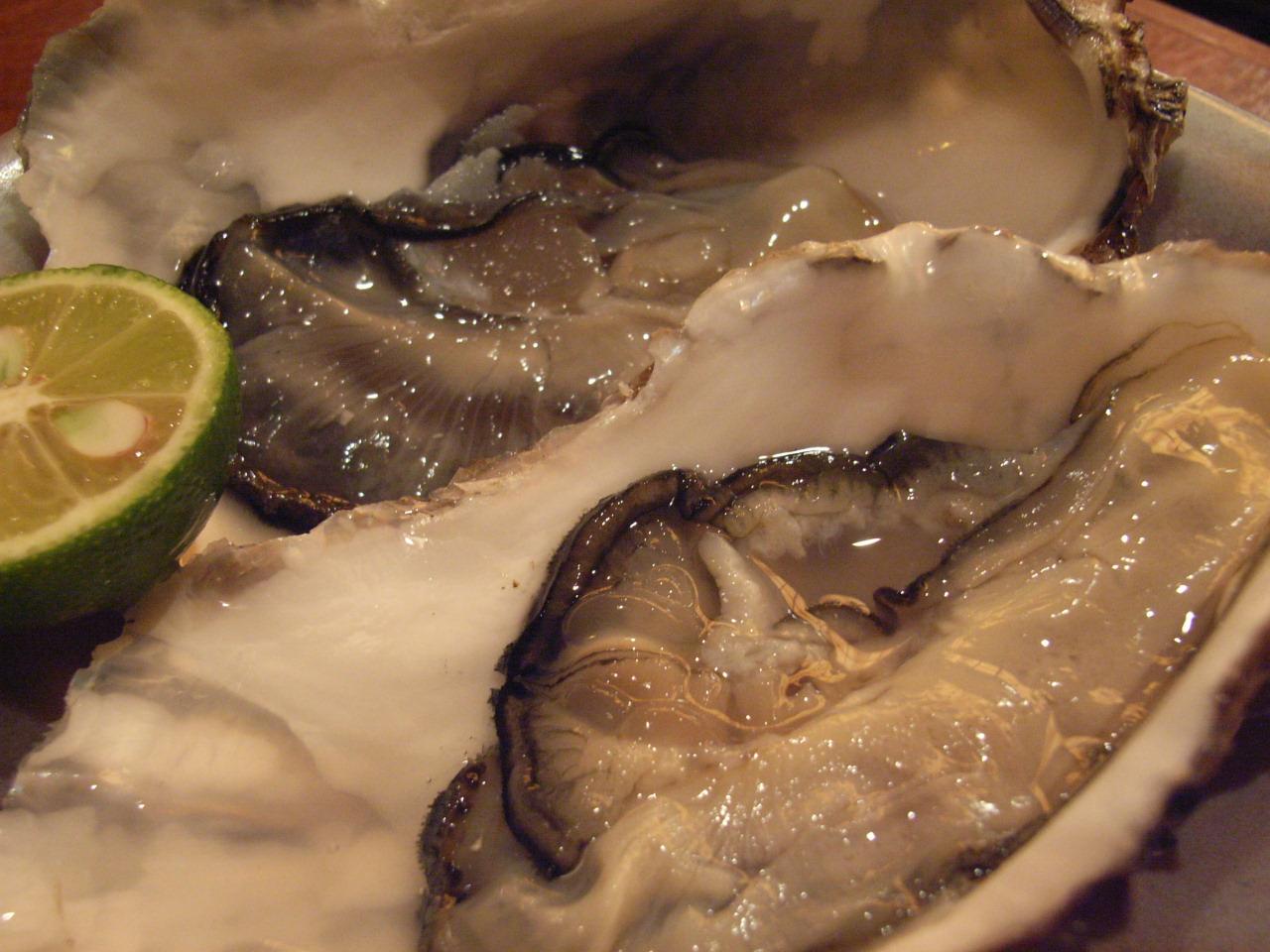 10月31日(火) これがサロマの牡蠣よ_d0082944_1251748.jpg